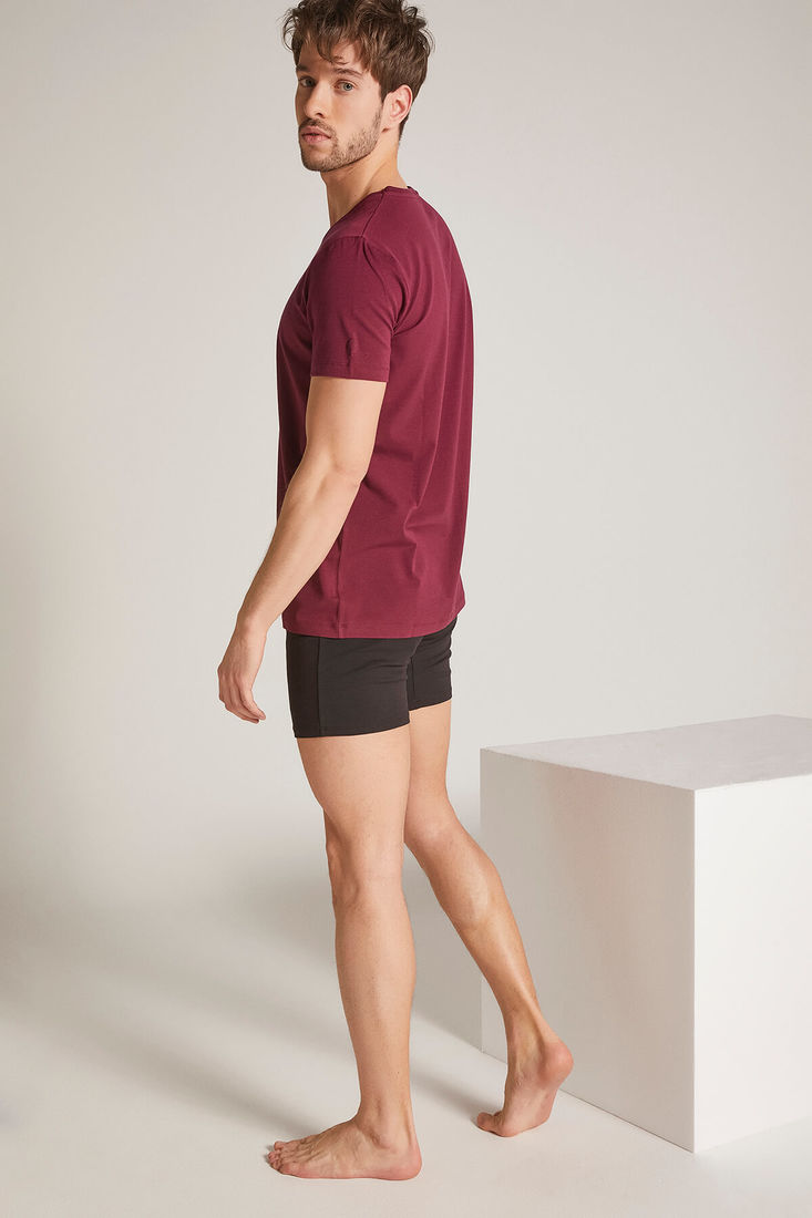 Men Claret Red V Neck Tshirt